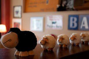 Osteria Pecora Nera le pecore in fila